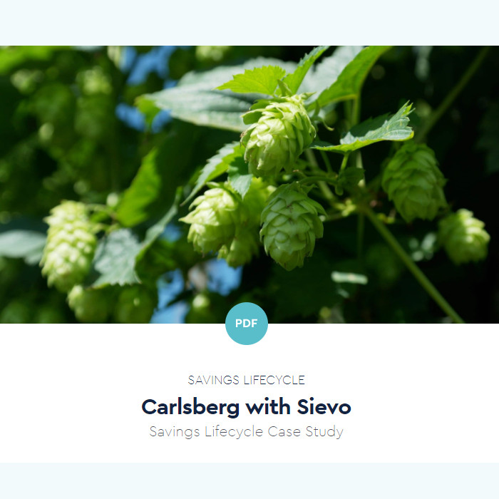 Carlsberg - Savings Lifecycle